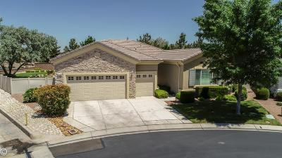 Apple Valley Single Family Home For Sale: 19288 Galloping Hill Road