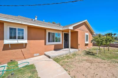 Hesperia Single Family Home For Sale: 11009 4th Avenue