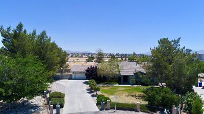 Apple Valley Single Family Home For Sale: 19196 Cochise Place