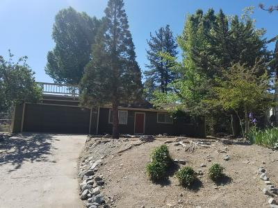 Wrightwood Single Family Home For Sale: 2164 Outer 2 Highway