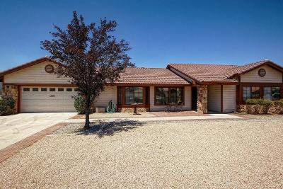 Apple Valley Single Family Home For Sale: 13366 Ivanpah Road