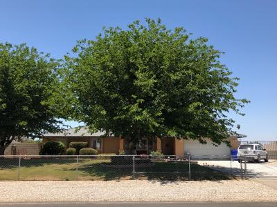 Apple Valley Single Family Home For Sale: 12590 Waynoka Road
