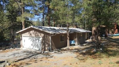 Wrightwood Single Family Home For Sale: 23404 Flume Canyon Drive