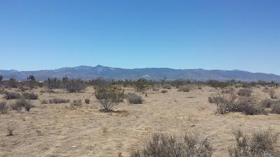 Residential Lots & Land For Sale: Greasewood Lane