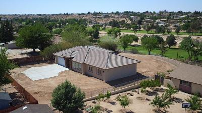 Hesperia Single Family Home For Sale: 18696 Hinton Street