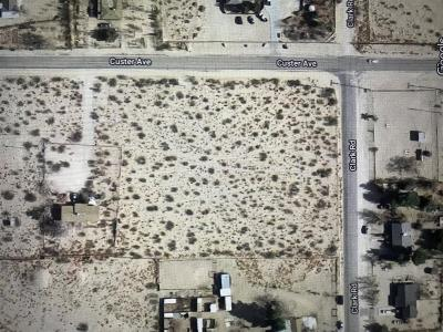 Lucerne Valley Residential Lots & Land For Sale: NW Custer Drive