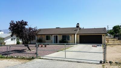 Hesperia Single Family Home For Sale: 16405 Fir Street