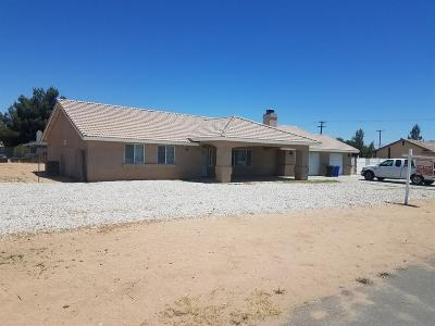 Apple Valley Single Family Home For Sale: 20862 Lone Eagle Road