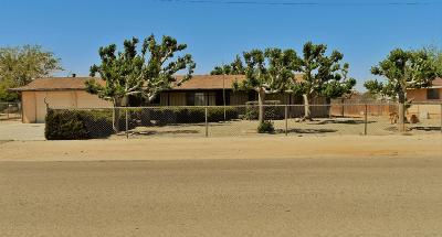 Hesperia Single Family Home For Sale: 16070 Sycamore Street