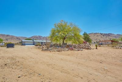 Apple Valley Single Family Home For Sale: 15077 Burns Drive
