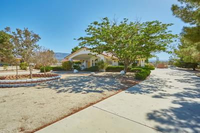 Pinon Hills Single Family Home For Sale: 11944 Ponderosa Road