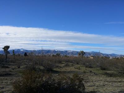 Phelan Residential Lots & Land For Sale: Pionero Road