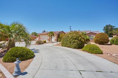 Apple Valley Single Family Home For Sale: 19904 Talihina Road