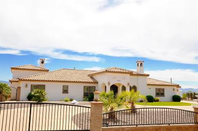 Apple Valley Single Family Home For Sale: 16345 Winton Road