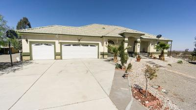 Pinon Hills Single Family Home For Sale: 13090 Blanco Road