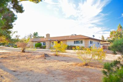 Hesperia Single Family Home For Sale: 17000 Mission Street