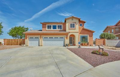 Victorville Single Family Home For Sale: 12242 Durango Court