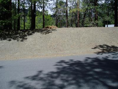 Wrightwood Residential Lots & Land For Sale: 668 Oriole Road