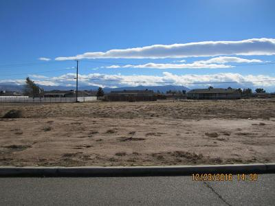 Apple Valley Residential Lots & Land For Sale: Outer Hwy 18 So. Highway
