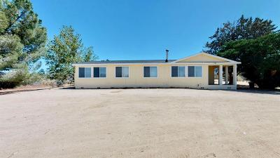 Pinon Hills Single Family Home For Sale: 131 Joshua Hills Road