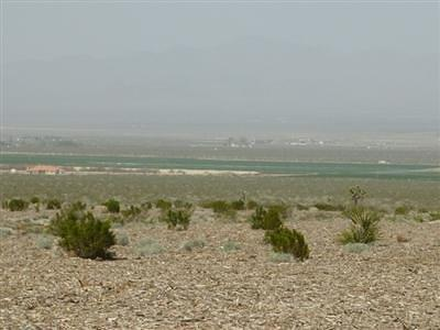 Lucerne Valley Residential Lots & Land For Sale: Dallas (East) Road