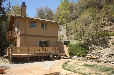 Wrightwood Single Family Home For Sale: 5590 Acorn Road