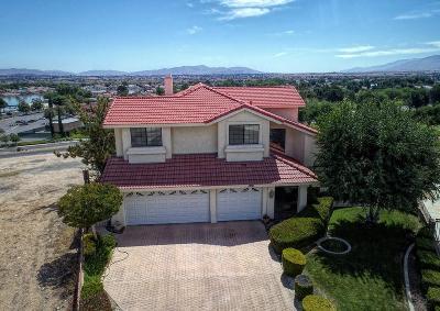 Victorville Single Family Home For Sale: 18090 Joshua Tree Lane