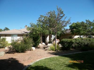 Oak Hills Single Family Home For Sale: 9839 Bellflower Street