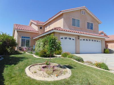 Victorville Single Family Home For Sale: 17558 Fisher Street