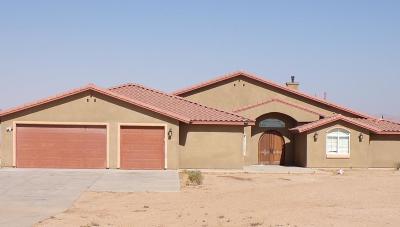 Hesperia Single Family Home For Sale: 10279 11th Avenue