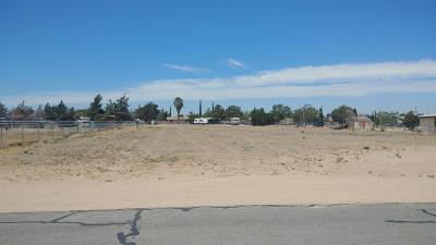 Hesperia Residential Lots & Land For Sale: 10th Avenue