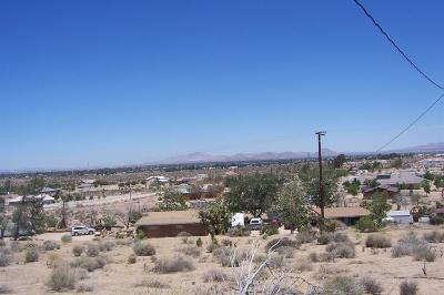 Apple Valley Residential Lots & Land For Sale: 9865 Pioneer Road