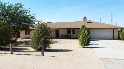 Apple Valley Single Family Home For Sale: 21000 Quileute Road