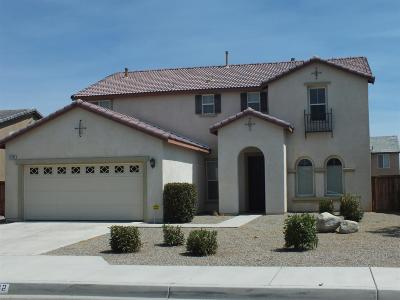 Adelanto Single Family Home For Sale: 11142 Blue Mesa Avenue