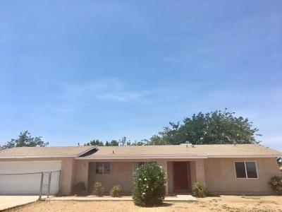 Hesperia Single Family Home For Sale: 7680 Peach Avenue