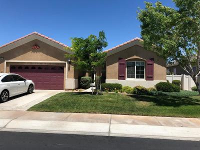 Apple Valley Single Family Home For Sale: 10935 Katepwa Street
