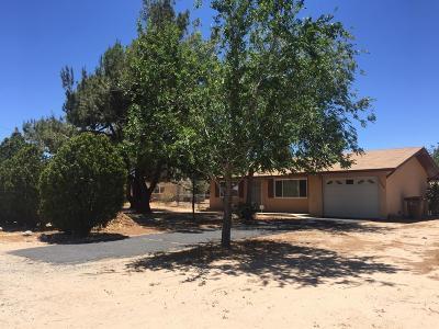 Hesperia Single Family Home For Sale: 9844 Oakwood Avenue