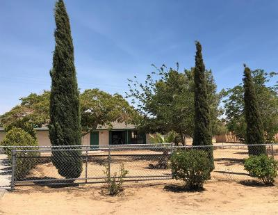 Apple Valley Single Family Home For Sale: 11891 Mohawk Road