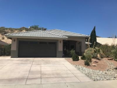 Victorville Single Family Home For Sale: 13450 Spring Valley Parkway