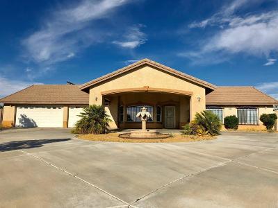 Hesperia Single Family Home For Sale: 11769 I Avenue