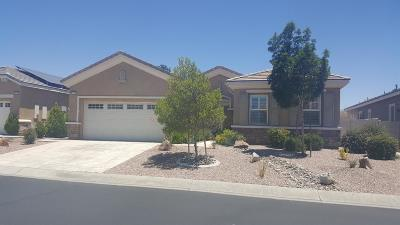 Apple Valley Single Family Home For Sale: 10329 Wilmington Lane