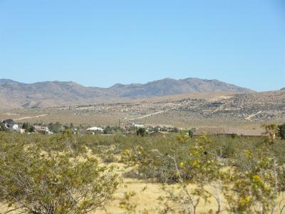 Apple Valley Residential Lots & Land For Sale: Las Piedras Road