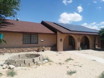 Lucerne Valley Single Family Home For Sale: 10611 Oracle Road