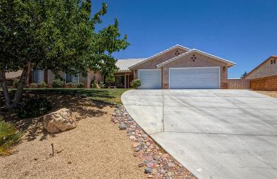 Apple Valley Single Family Home For Sale: 13427 Paoha Road