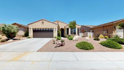 Apple Valley Single Family Home For Sale: 10925 Phoenix Road