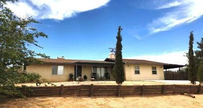 Victorville Single Family Home For Sale: 15828 Meseta Road