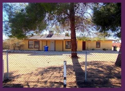 Apple Valley Single Family Home For Sale: 21391 Us Highway 18 Road