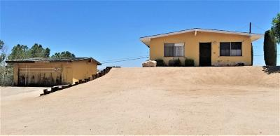 Victorville Single Family Home For Sale: 15911 N Culver Road