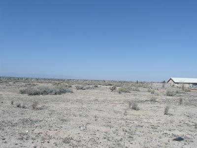Apple Valley Residential Lots & Land For Sale: S Deep Creek Road #92308