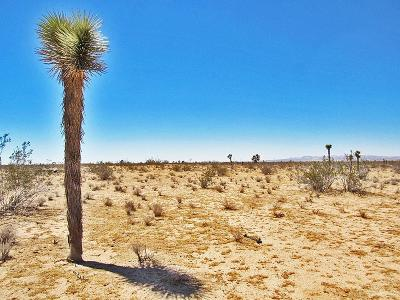 Adelanto Commercial Lots & Land For Sale: Lupin Road